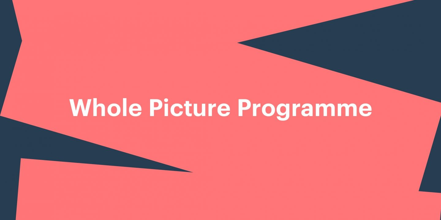 Whole Picture Programme banner